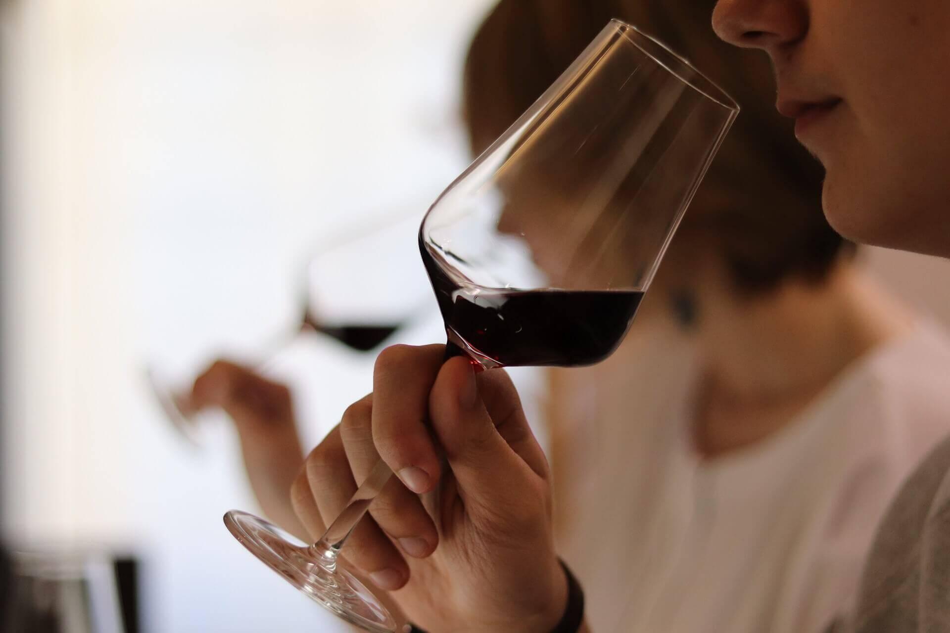 Sensation Vin les familles aromatiques des vins