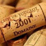 Sensattion Vin, conserver ses vins de Bourgogne