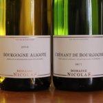 Bourgogne Aligoté et Crémant de Bourgogne
