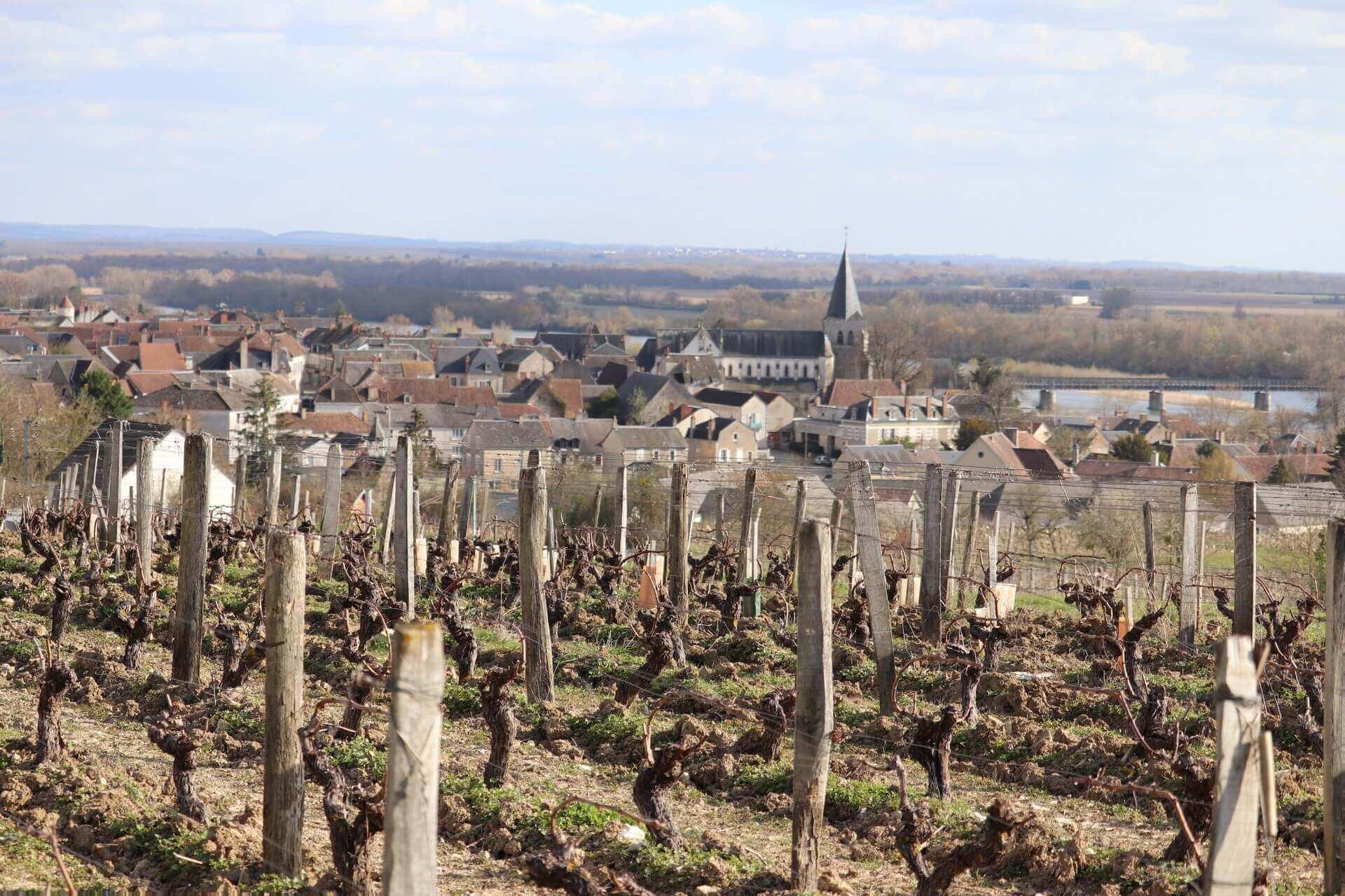 Le vignoble de Pouilly-Fumé, situé en Bourgogne-Franche-Comté