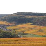 les vins de Bourgogne, vous connaissez ?